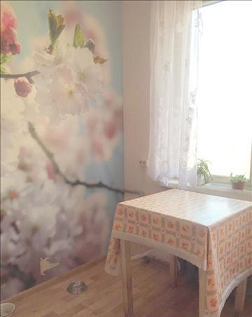 Ростовская область, Ростов-на-Дону, Пушкинская улица, д.181